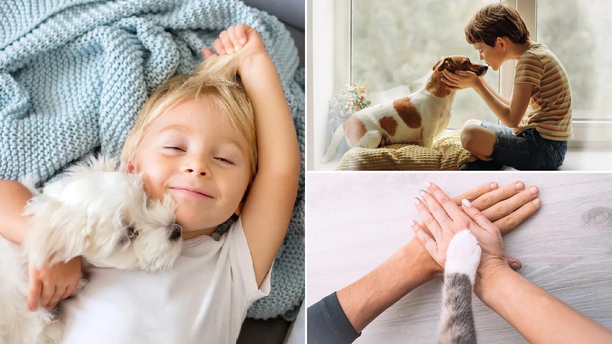 Beneficiosos psicológicos de tener una mascota