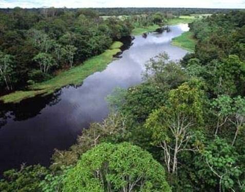 amazonas2