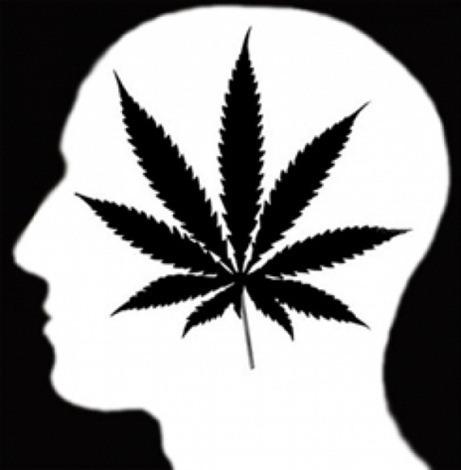 La marihuana afecta la memoria