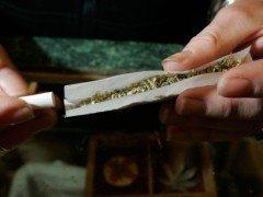 ¿Puede desarrollarse esquizofrenia por el consumo de cannabis?