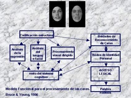 reconocimiento rostros