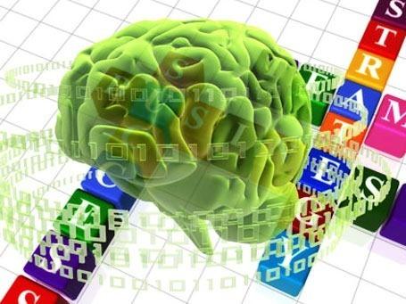 salud-estimular-cerebro