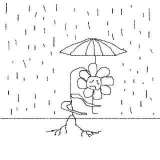 test persona bajo la lluvia